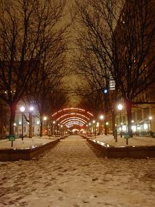 snowy-cincinnati