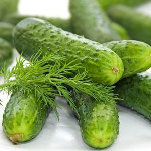 cucumber_nationalpickling_organic