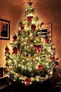 christmastree-main_Full