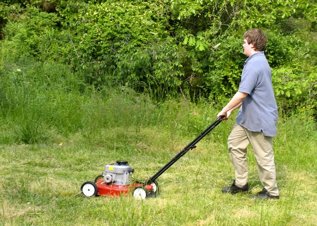Late Season Lawn Mowing Tips - Terry L. Ettinger Horticulture