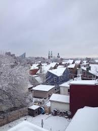 snowy covington