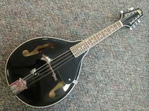 rogue mandolin