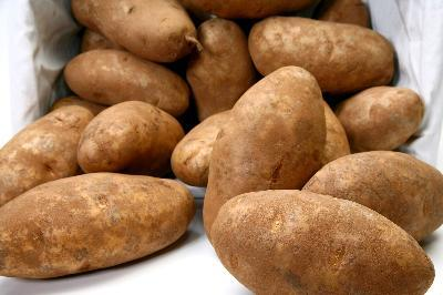 About Once A Month At The Kroger On Madison Avenue In Covington Kentucky Ill Pick Up An Eight Pound Bag Of Jumbo Russet Potatoes That